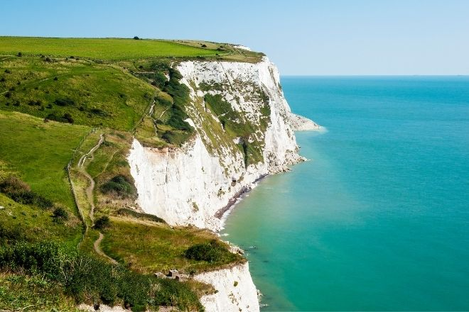 a close up of a hillside next to a body of water with White Cliffs of Dover in the background