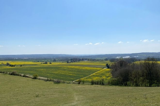a view over the North Downs in Kent