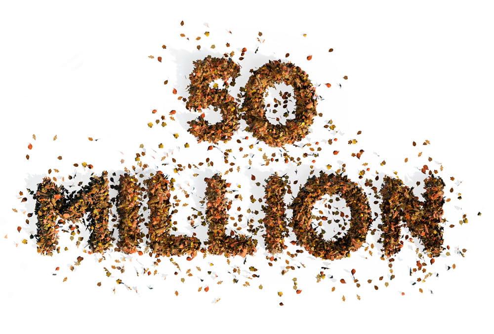 50 Million written in leaves